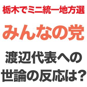渡部喜美 栃木 選挙 日光市